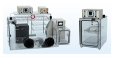 Coy Lab Hypoxic Chambers Products